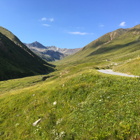 Tour Hiking di Federia - Livigno